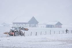 THEMENBILD - Landwirte im Schneetreiben beim reparieren eines Zauns, aufgenommen am 07. April 2021 in Zell am See, Österreich // Farmers repairing a fence in the snow, Zell am See, Austria on 2021/04/07. EXPA Pictures © 2021, PhotoCredit: EXPA/ JFK