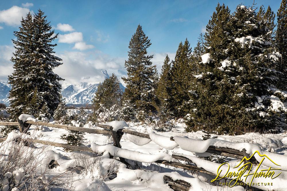 Buckrail fence, winter, Grand Teton National Park