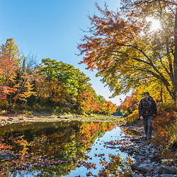 A man hikes next to Mud Brook, a tributary of the East Branch of the Penobscot River in Maine's Northern Forest. Fall.