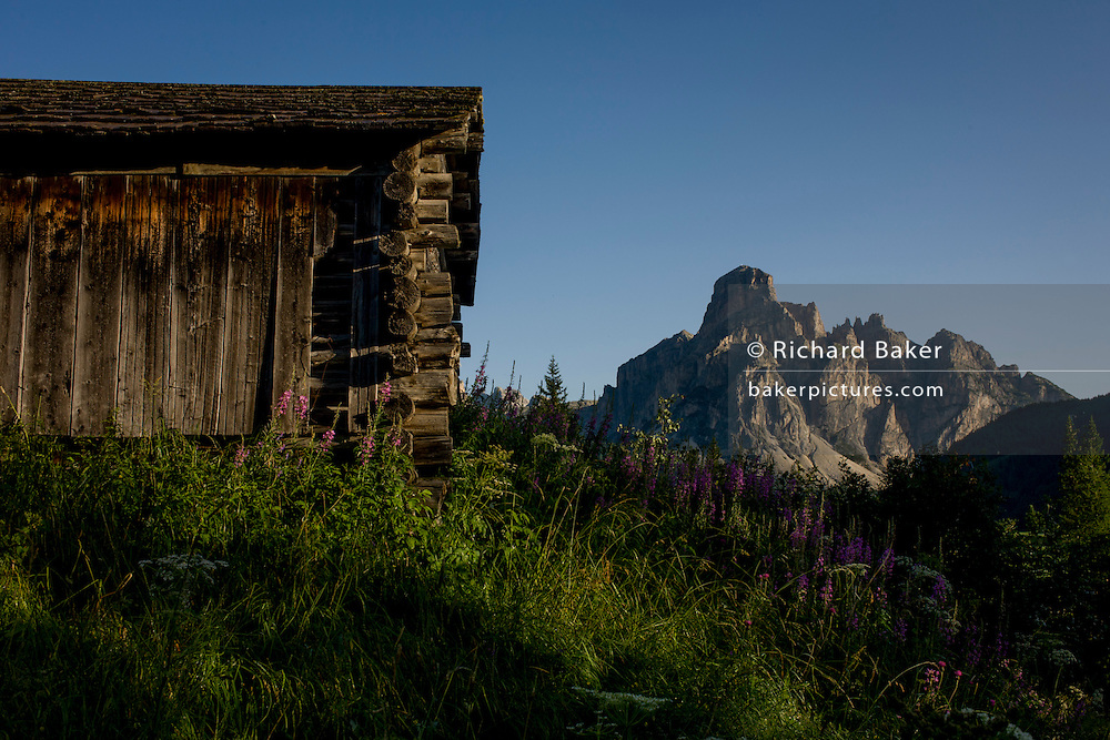 Typical old Alpine timber hut and Mount Sassongher  (2,665m) above Corvara in the Dolomites, south Tyrol, northern Italy. The oldest barns in this region are called Tierstaller and follow the same basic design: That of for warmth in the long, hard winters in the mountains and for coolness in the hot summers. But farming has changed dramatically in the Alps. Barns reflect and accompany this transformation. In villages and open landscapes, more and more barns are abandoned, used for other purposes, or falling into disrepair. Contemporary farmers build new barns for stockbreeding, fruit storage, and wine pressing. San Leonardo is in the municipality of Badia populated mostly by people who speak the ancient Ladin language.