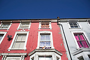 Cat sits on the window ledge of residential terraced housing in Brixton, London, UK. This is a typical street with homes of dofferent eras along a terrace, with bay wondows and painted different colours.