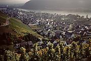 Rhine River, vineyards near Linz, Germany.