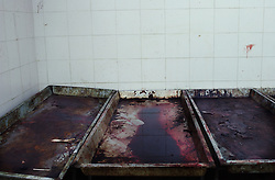 Recently emptied carts in the morgue in Caracas.  All of the murder victims in Caracas are processed through the morgue.