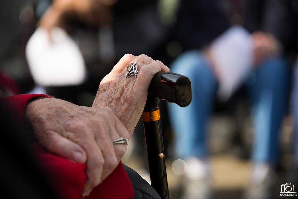 The Veterans Day Ceremony takes place at Milpitas City Hall's Veterans Plaza in Milpitas, California, on November 11, 2013. (Stan Olszewski/SOSKIphoto)