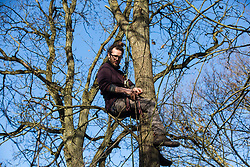 Harefield, UK. 18 January, 2020. Earth protector Quercus climbs a tree at Colne Valley wildlife protection camp after activists from Extinction Rebellion, Stop HS2 and Save the Colne Valley had reoccupied the camp on the second day of a three-day 'Stand for the Trees' protest in the Colne Valley timed to coincide with tree felling work by HS2. Bailiffs acting for HS2 had evicted all but two activists from the camp the previous week. 108 ancient woodlands are set to be destroyed by the high-speed rail link.