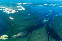 Aerial view of large estuaries and mangroves, Quirimbas, Mozambique