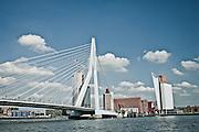 Erasmus Bridge and Rotterdam Harbor