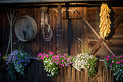 Traditional farming tools and drying corn in a rural Slovenian village, on 19th June 2018, in Bohinjska Bela, Bled, Slovenia.
