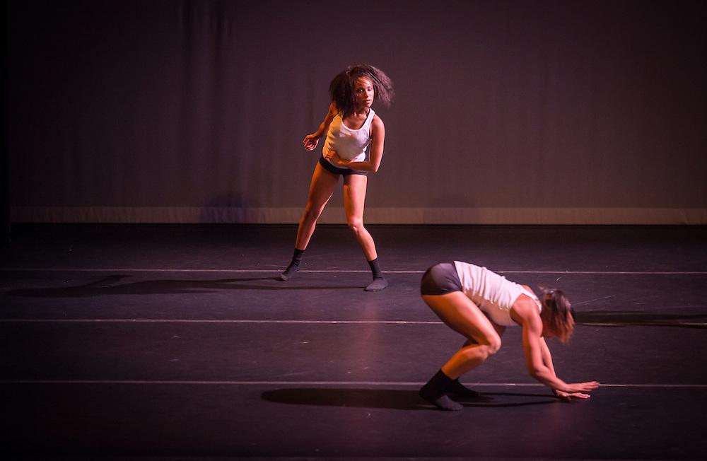 Boston Contemporary Dance Festival at the Paramount Theatre. Boston, MA 8/17/2013 Good Dance Since 1984