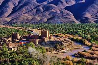 Maroc, Haut-Atlas, vallée du Draa, Kasbah ou Ksar de Ait Abou ou Said, Palmeraie // Morocco, High Atlas, Draa valley, Ait Hamou ou Saïd Kasbah
