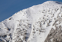 Several skier tracks can be seen entering a the area where a massive avalanche scoured the south face of Taylor Mountain in January 2012. No one was injured in the slide, which ran to the bottom of the Coal Creek drainage.