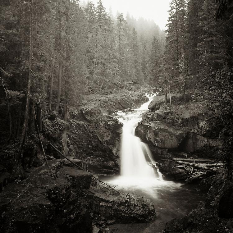 Silver Falls on the Ohanapecosh River in Mt. Rainier National Park, WA.