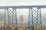 Morning fog on Oct. 4, 2020.