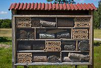 TILBURG -  Insectenhotel PRISE D'EAU GOLF, golfbaan.  COPYRIGHT KOEN SUYK