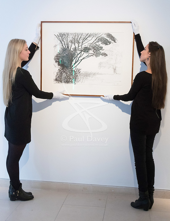 """Christies, St James, London, March 4th 2016. Gallery assistants hang David Hockney's """"Kilham to Rudston"""", charcoal on paper from 2008 at the preview for the It's Our World charity auction at Christie's. Over 40 leading artists including David Hockney, Sir Antony Gormley, David Nash, Sir Peter Blake, Yinka Shonibare, Sir Quentin Blake, Emily Young and Maggi Hambling have committed artworks to the It's Our World Auction in support of The Big Draw and Jupiter Artland Foundation, to be sold at Christie's London on 10 March 2016.<br />  ///FOR LICENCING CONTACT: paul@pauldaveycreative.co.uk TEL:+44 (0) 7966 016 296 or +44 (0) 20 8969 6875. ©2015 Paul R Davey. All rights reserved."""