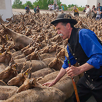 Celebration of the start of the new grazing season in the Great Hungarian Plains in Hortobagy, 200 km (124 miles) east of Budapest in Hungary on April 30, 2011. ATTILA VOLGYI