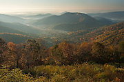 Shenandoah National Park, Virginia.    Sunrise was over.  There had been very little detail in dawn's darkness down there in Shifflet Hollow.  From the overlook on Loft Mountain, I made a cup of coffee on my stove.  Sipping,  I watched as the sun climbed and lit the fog that crept across the lowest areas and between the ridges below. And I began to realize how subtle the scene was:  the gap in the trees that showed a farm just beginning to be illuminated;  the Piedmont stretching out forever beyond the furthest mountain, under it's own gauzy white;  the sparkle and glow of the back lighted trees and shrubs just below me.  Every indicator on my camera screamed too bright,  and my brain told me the light was all wrong for this to work.  But I was drawn in by the treetops and ridgelines lighting up like nature's light bulbs.  God slapped me, and said we can't choose what is handed to us.  And as the darkness got chased out of the meadows and clearings, morning came to Shifflet Hollow.
