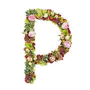 Capital Letter P Part of a set of letters, Numbers and symbols of the Alphabet made with flowers, branches and leaves on white background