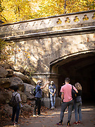Brooklyn, NY - November 7, 2020: A walk through Prospect Park with Turnstile Tours.<br /> <br /> Photos by Clay Williams.<br /> <br /> © Clay Williams / claywilliamsphoto.com