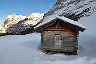 Mountain hut in the winter snow near Grindelwald - Swiss Alps - Switzerland .<br /> <br /> Visit our SWITZERLAND  & ALPS PHOTO COLLECTIONS for more  photos  to browse of  download or buy as prints https://funkystock.photoshelter.com/gallery-collection/Pictures-Images-of-Switzerland-Photos-of-Swiss-Alps-Landmark-Sites/C0000DPgRJMSrQ3U