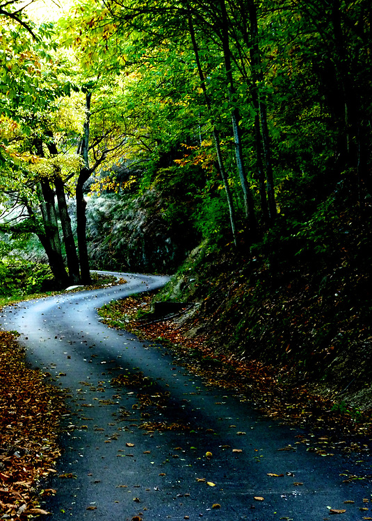 What a pleasure to explore roads like this one in the Massif Central region of central France.  It was early autumn when we found this road in the mountains of the Massif Central.