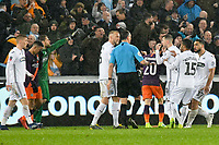 Football - 2018 / 2019 Emirates FA Cup - Quarter-Final: Swansea City vs. Manchester City<br /> <br /> Swansea dispute the penalty which led to the equaliser , at The Liberty Stadium.<br /> <br /> COLORSPORT/WINSTON BYNORTH