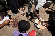 Men are preparing Halal meat in Bagega, pop. 9000, a large village affected by lead poisoning due to the unsafe techniques employed for extracting gold, in Zamfara State, Nigeria. It is mainly caused by ingestion and breathing of lead particles released in the steps to isolate the gold from other metals. This type of lead is soluble in stomach acid and children under-5 are most affected, as they tend to ingest more through their hands by touching the ground, and are developing symptoms often leading to death or serious disabilities.