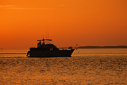 Boat - Early Morning In The Everglades
