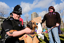 © Licensed to London News Pictures. <br /> 01/03/2017. <br /> Middlesbrough, UK.  <br /> <br /> Sgt Bryan Marsay plays with English Mastiff, Roxi, as Protestors gather outside Teesside Magistrates' Court to voice their disgust at MICHAEL HEATHCOCK, 59 and RICHARD FINCH, 60, both from Redcar as they appeared at Teesside Magistrates' Court and were sentenced to four months in prison and banned from keeping animals for life after pleading guilty to offences under the Animal Welfare Act on March 1, 2017 in Middlesbrough, United Kingdom. HEATHCOCK was charged with driving a nail into the head of his Terrier dog, Scamp, before burying it alive in Kirkleatham Woods near Redcar. His friend RICHARD FINCH, 60 from Redcar also pleaded guilty to assisting in the act. A couple walking in the woods heard the dog whimpering under a mound of earth with injuries that were so severe the dog had to be put down by a vet.<br /> <br /> Photo credit: Ian Forsyth/LNP