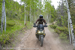 Danger Dan Hardick riding his 2-week old Harley-Davidson Pan-America adventure bike on a trail just outside Red River, NM, USA. Saturday, May 29, 2021. Photography ©2021 Michael Lichter.