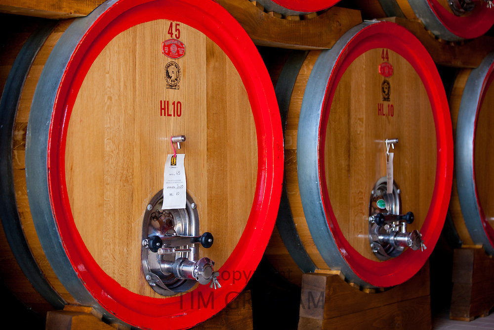 Brunello di Montalcino 2010 vintage wine stored in barrique barrels at the Palazzo wine estate in Val D'Orcia, Tuscany, Italy