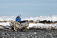 A woman sits on an old fallen tree and journals on Bishop Beach in Homer, AK, with snow covered mountains in the distance.