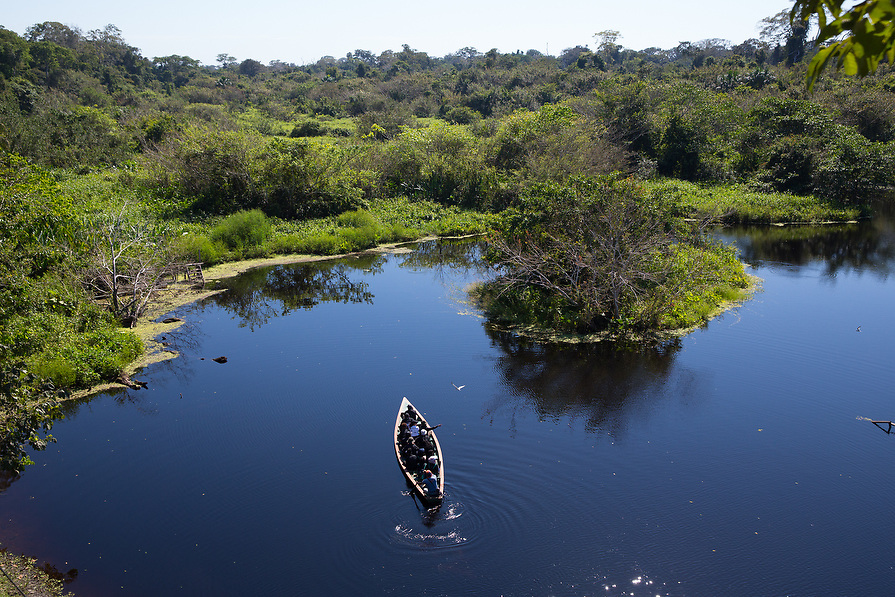 The group looks for wildlife as they boat through the jungle.