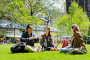 For Victoria University of Wellington, NZ.  Photo credit: Stephen A'Court.