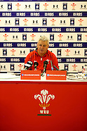 Wales Press Conference 280114