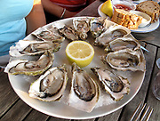 Oysters half shell photograph in a restaurant with a separate plate of fresh bread, butter and oil