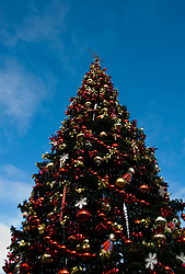 California: San Francisco Christmas celebration, Pier 39. Christmas tree and ornanents. Photo copyright Lee Foster.  Photo # 32-casanf75985