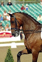 European Dressage Championships Hickstead 2003<br /> Photo © Dirk Caremans