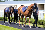 Accrington Stanley ridden by Callum Shepherd trained by George Scott and Benin ridden by Luke Morris trained by Sir Mark Prescott - Mandatory by-line: Robbie Stephenson/JMP - 22/07/2020 - HORSE RACING - Bath Racecoure - Bath, England - Bath Races