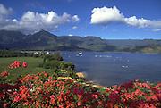 Bouganvilla flower, Princeville, Hanalei Bay, Kauai, Hawaii, USA<br />