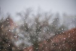 Eine Kaltfront bringt Regen und in höheren Lagen Schnee. Im Bild Schneefall in Klosterneuburg, aufgenommen am 31.03.2020, Klosterneuburg, Oesterreich // A cold front brings rain and snow at higher altitudes. In the picture snowfall in Klosterneuburg, Austria on 2020/03/31. EXPA Pictures © 2020, PhotoCredit: EXPA/ Florian Schroetter