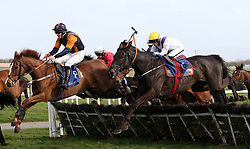Loose horse 'Monkshood' clears a fence during the I.N.H. Stallion Owners EBF Novice Handicap Hurdle Series Final during The Easter Tuesday Meeting at Fairyhouse, Ratoath.