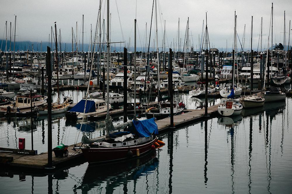 The Seward Harbor full of sail boats in morning fog.