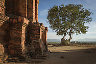 Named for and built in honor of the legendary king Po Klong Garai, this Cham temple tower is located in Phan Rang Thap Cham, also known as Panduranga, <br /> Ninh Thuan province, Southern Vietnam, Southeast Asia