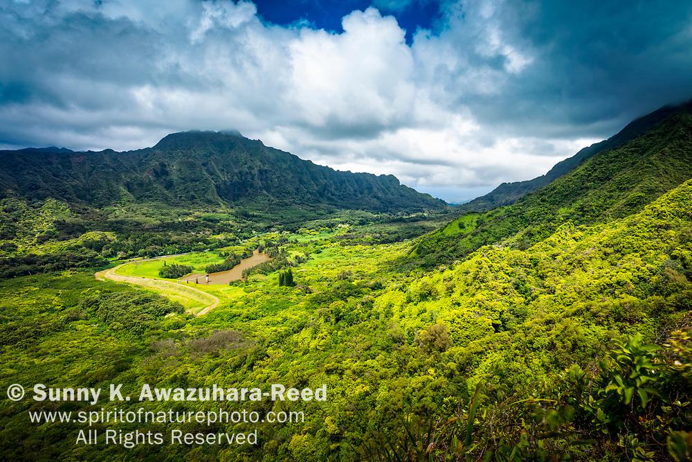 View of Nu'uanu Valley and Ko'olau Range. Oahu Island, Hawaii.