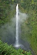 Akaka Falls near Hilo Hawaii.