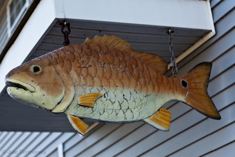 Redfish sign in Delacroix Louisiana.
