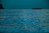 Stock Photos of Balmoral Beach by Paul Foley