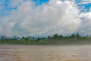 Misty rainforest along the banks of Napo River, Ecuador.