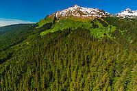 Aerial view, Tongass National Forest, Juneau, Alaska USA.
